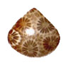 Fossil Coral Cabochons, Gemstone Cabochons